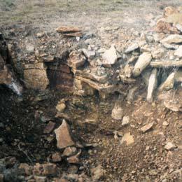 Qu trufa escoger en funci n del suelo y del clima for Suelo pedregoso