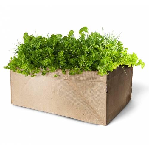 Mini jardin de plantas arom ticas bio venta mini jardin - Jardin de plantas aromaticas ...
