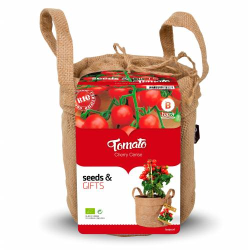Kit de cultivo tomates cherry 39 bio cherry 39 venta kit de for Kit de cultivo de interior