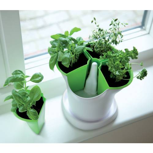 maceta para plantas arom ticas verde y blanco venta