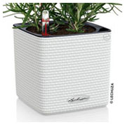 CUBE Color 14 cm - Blanco - LECHUZA