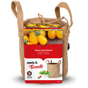 Kit de Cultivo Tomates Cherry 'Yellow Pear Shaped'